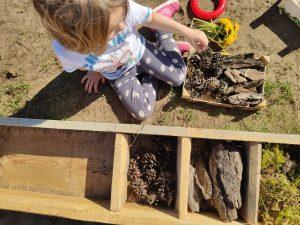 Dziewczynka układa szyszki i korę w domku dla owadów